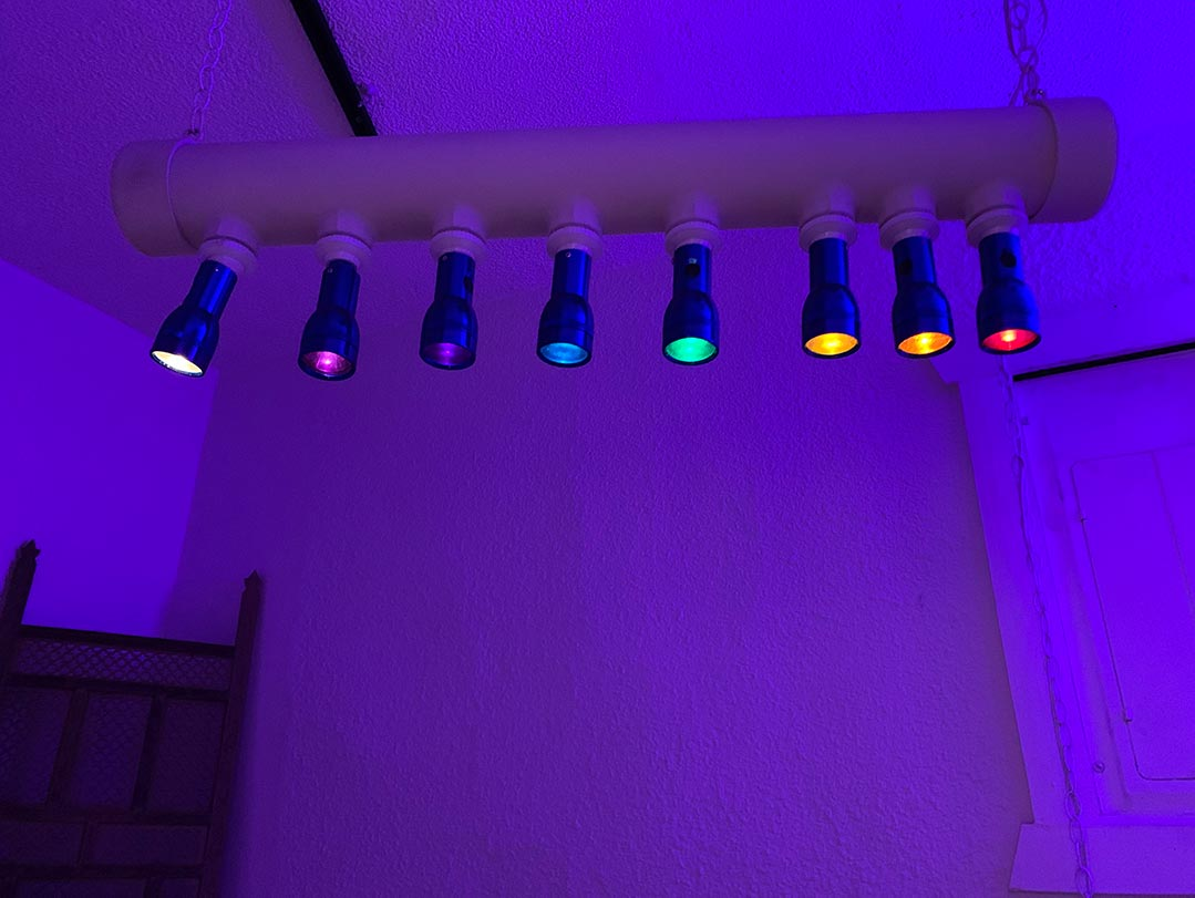 light therapy at Steamboat Springs Healing Spa