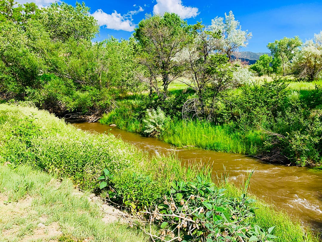 River in backyard at Steamboat Hot Springs Spa in Reno, Nevada
